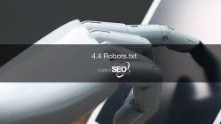 robot txt website auditor