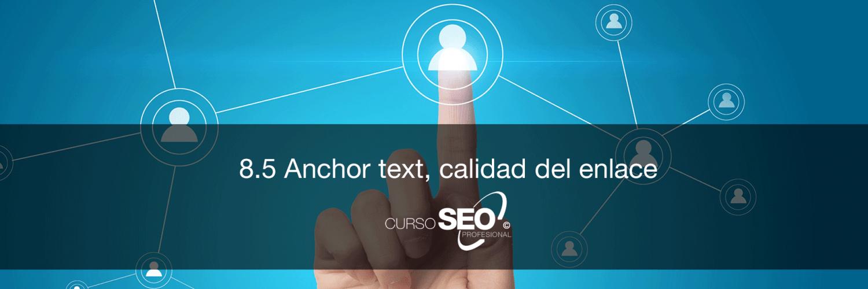 anchor text calidad del enlace